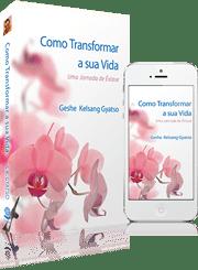 Download do livro Como Transformar a sua Vida